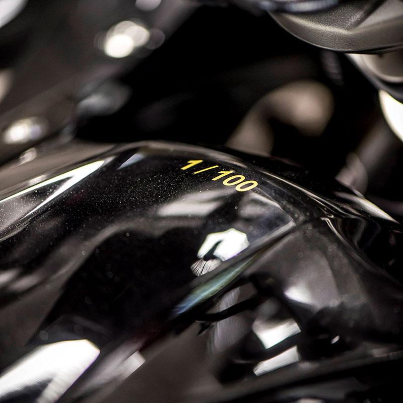 motowish-r1200rs-iconic-100-1
