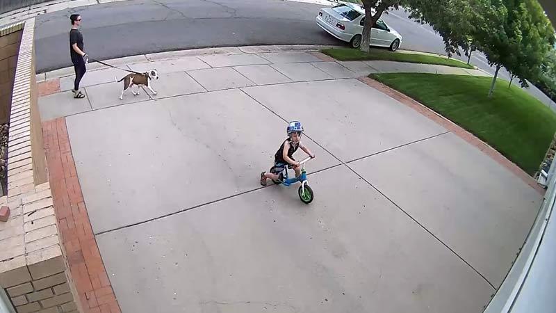 วิธีแก้ปัญหาของไบค์เกอร์ เมื่อถูกเด็กปั่นจักรยานมาป่วนสัญญาณกันขโมยที่บ้าน