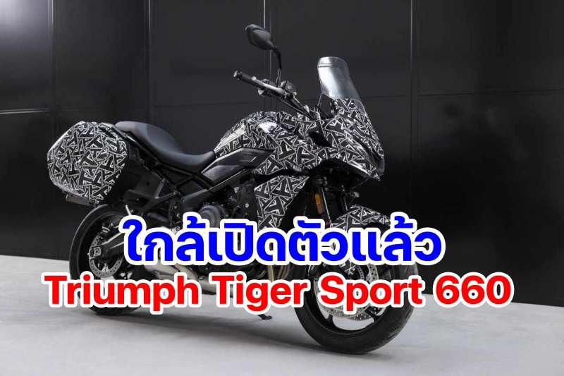 Triumph_Tiger_sport 660-2